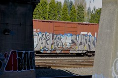 AJAR - OREKS - SCURE (dim9th) Tags: seattle graffiti ajar orek scure oreks