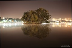 night shot (pecovgfx) Tags: longexposure light lake birds night island raw cityscape natural background foggy surreal surface default cameraraw improvisedtripod sigma2470f28exdgmacro canon5dmkii straightotofthecamera