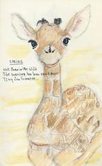 Giraffe Haiku - Spring (merlinprincesse) Tags: poetry poem haiku giraffe girafe poème haïku 2013yearofthegiraffe
