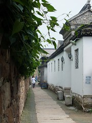 Luxiang Village (砂仁無數) Tags: suzhou fuji 苏州 hs33 luxiang 陆巷古村