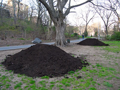 Fresh Soil (jschumacher) Tags: nyc soil morningsidepark