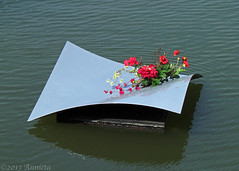 Waterzilver ( Annieta  Off / On) Tags: city haven flower holland art nature water netherlands fleur dutch canon harbour kunst nederland natuur powershot april ville bloemen stad allrightsreserved gracht silvertown krimpenerwaard schoonhoven olddutch 2013 annieta toeristisch zilverstad oudholland goldstaraward zilverwerk toeristic usingthisphotowithoutpermissionisillegal sx30is drijvendzilver