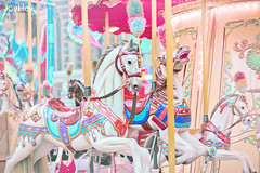"Carousel Horses • <a style=""font-size:0.8em;"" href=""https://www.flickr.com/photos/41772031@N08/8706120179/"" target=""_blank"">View on Flickr</a>"
