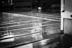 DSC_1011 (Makszu) Tags: winter bw fall water 35mm spring nikon noir droplet nikkor et blanc d5100
