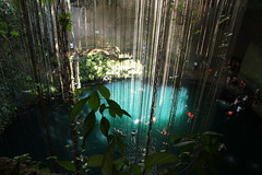 Peeking through the vines at Ik Kil cenote (Rachel219) Tags: mexico maya mayan cenote ikkil yucatnpeninsula blinkagain