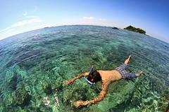 Snorkeling | Pulau Samalona, Makassar