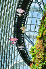 Kites (chooyutshing) Tags: kite cloudforest layang treetopwalk marinabay gardensbythebay