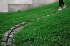 Coming down the drain (Jani M) Tags: street urban feet drain green grass