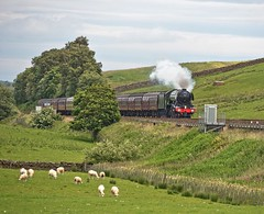 "LNER A3 Class 4-6-2 No 60103 Flying Scotsman in charge of ""The Waverly"" on the outward leg at Gilsland on the Newcastle to Carlisle Line (penlea1954) Tags: uk railroad england train newcastle flying pacific outdoor no transport engine rail railway loco trains class steam line northumberland vehicle a3 locomotive sir nigel carlisle cumberland borders locomotives brampton waverley scotsman the ner lner 462 gresley gilsland 60103"