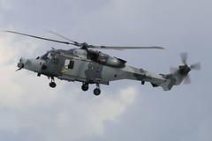 ZZ410 Yeovilton 02/07/16 (Andy Vass Aviation) Tags: yeovilton helicopter aac wildcat zz410
