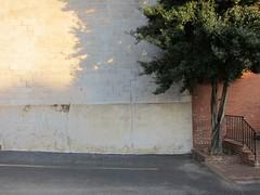 Treppenwitz / Stairy Heavens (bartholmy) Tags: richmond va virginia shockoebottom tobaccorow baum tree wand wall schatten shadow treppe stairs noparking parkverbot strasenmarkierung streetmarking gelnder banister minimal minimalism minimalismus minimalistisch abstrakt abstract