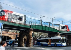 Sydney Light Rail and Sydney Buses - LRV2123 and  Mercedes 1224 cross in Eddy Avenue (john cowper) Tags: sydneylightrail sydneybuses lrv2123 urbos3 mercedes mo1224 eddyavenue centralrailwaystation sydneypublictransport newsouthwales