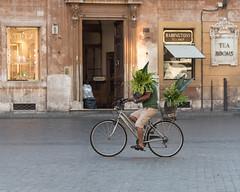 In Piazza Spagna at Rome (Steve Barowik) Tags: rome roma lazio nikond750 barowik stevebarowik sbofls26 nikon28300mmf35f56g italy italia zoom fx fullframe piazza city citta vatican campo termini forum colisseum collisseo trevi spanishsteps piazzanavona treefontana lovelycity unlimitedphotos wonderfulworld quantumentanglement flickrelite piazzadispagna babingtons