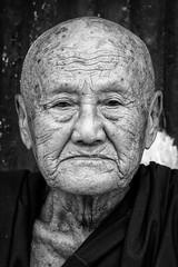 The Monks of Yangon (virtualwayfarer) Tags: myanmar burma asia exploring travel traveling budgettravel yangon ragoon shwedagonpagoda pagoda shwedagon temple buddhisttemple monk monks oldmonk oldman portrait tourism solotravel adventure adventuretravel wisdom age character peopleofmyanmar yangontobagan canon canon6d dslr yangontour attractions yangoncity