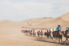IMG_6898 (chungkwan) Tags: china chinese gansu province weather dry sands canon canonphotos travel world nature landmark landscape   dunhuang  crescent crescentlake  mingsha mingshamountain  camels silkroad