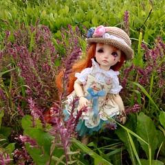 image (akyabianchi) Tags: bjd abjd bewithyou pomegranate yosd be with you dollsbe