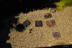 (^^Teraon) Tags: japan nara    shinyakusiji canon eos m2 eosm2 buddhism    kegon temple templo  summer vero verano   landscapes scenery landscape bonsai  drylandscape rockgarden karesansui garden jardim jardn green nature