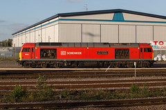 DB Schenker 60040 The Territorial Army Centenary (daveymills31294) Tags: db schenker 60040 doncaster up decoy yard class 60 dbs the territorial army centenary