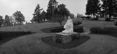 Jesus, Portland (austin granger) Tags: jesus portland cemetery statuary graves shrubs religion christianity noblex