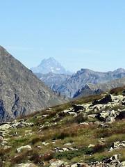 (78) (Mark Konick) Tags: italy italie italia italien france francia frankreich alpen alpes alpi alps backpacking bergsee bergtour bergwandern bivouac gebirge hiking lac lago lake markkonick montagnes mountains nathaliedeligeon randonne trekking wandern bouquetin ibex cabramonts stambecco steinbock chamois camoscio gamuza rebeco gams gmse gemse gmsbock gemsbock vacas khe mucche vacche cows cascade chutedeau waterfall wasserfall cascata cascada saltodeagua