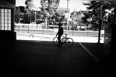 Bike Siloutte (Nick Lambert!) Tags: street blackandwhite bw fuji shadows paloalto streetscape siloutte nicklambert fujix100 bikesiloutte