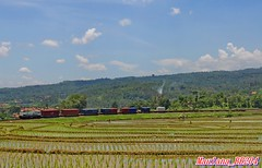 Container Freight Train (maulana_BB204) Tags: me2youphotographylevel1
