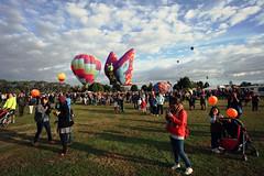 #97/365 - Crowd Pleaser (Jaime Carter) Tags: morning newzealand people lake colour basket sunday crowd balloon hamilton waikato 365 97 day97 thirdedition balloonsoverwaikato project365 yearthree 2013 lakerotoroa jaimewalsh innescommon april2013 jaimecarter 3652013 balloonsoverwaikato2013 7april2013