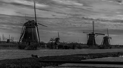 Windmills (Franco Beccari) Tags: world city trip travel flowers blue red vacation white holiday black holland color colour green art tourism me nature netherlands amsterdam yellow architecture night wow photo cool nikon europe day tulips windmills nikkor d600