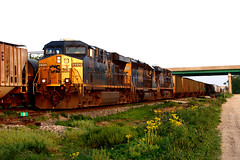 CSXT 5313 North at Danville, IL MAY11 (CentralILRailfan) Tags: railroad electric train illinois mixed general railway evolution trains il danville series ge rejected freight csx csxt rejections 5313 es40dc railpicturesnet railpictures