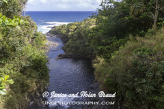 Oheo Gulch on the Road to Hana JN074220 (JaniceNolan_braud) Tags: hawaii waterfall rainforest stream maui sevensacredpools roadtohana oheogulch