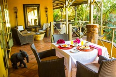 Villa Verdi Windhoek (Leading Lodges Of Africa) Tags: africa holiday bb namibia windhoek villaverdi leadinglodgesofafrica