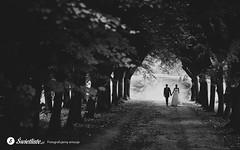 swietliste-fotografia-slubna-fotografujemy-emocje-Bydgoszcz