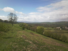 View from the path to the Black Mountains with the Brecon Beacons in the distance (John Steedman) Tags: wales cymru breconbeacons blackmountains powys paysdegalles   breconshire