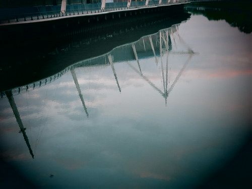 Millennium Stadium reflection