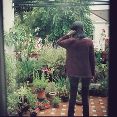 El patio. (abran fuego) Tags: flowers plants film girl nc spring sevilla terrace andalucia patio analogue kiev88 160 kodakportra adares