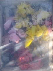 Cemetery memorial (DeadManTalking) Tags: deadmantalking