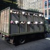 "So During My Lunch Hour We Managed To Catch The Other #Banksy Mobile Passing By On Madison Ave ""Sirens Of The Lambs"""