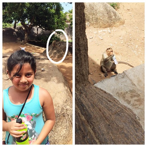 If you want a picture with a monkey, be prepared to lose your chilled drink to him🐒☀️  #incredibleindia #indiadiaries #mahabalipuram #varahacavetemple  #ancientarchitecture #familyfun #roadtrip #tamilnadu #summerfun #cheekymonkey