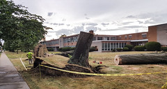 trees down at Lutheran High School East 02 - 2016-08-11 (Tim Evanson) Tags: clevelandheightsohio clevelandheightsmicroburst weather trees myhouse
