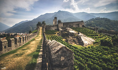 Battles and wine (VandenBerge Photography) Tags: unescoworldheritage vineyard defensivewall historical alps ancient castle castelgrande bellinzona tessin ticino switzerland schweiz sky canon clouds mountains lonelyplanet landscape sassocorbaro travel medieval middleages