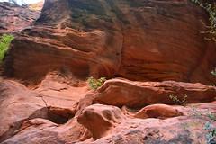 GEM_2954 (Gregg Montesi) Tags: zion national park angels landing
