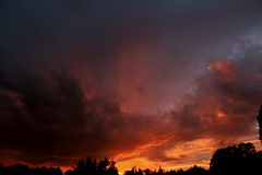 Evening Glow (shutterbusterbob) Tags: sunset clouds cloud cloudy stormclouds evening night dusk sky glow red orange pacificnorthwest nature northwestwashington westernwashington washington washingtonstate wild skagitcounty skagitvalley sedrowoolley skyscape trees black blue grey canon canoneos canoneos70d canon70d eos eos70d eoscanon 70d weather