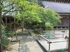 IMG_5096 (jaglazier) Tags: 2016 9916 architecture buildings copyright2016jamesaglazierandjamesaferguson dazaifu deciduoustrees japan kyushu religion religions september trees buddhist gardens rituals temples
