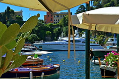 """Portofino"" (giannipaoloziliani) Tags: portofino colors italy sea seaview yacht boats flowers mare colori barche liguria genova province view nikon nikoncamera nikond3200"