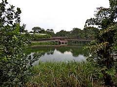 2016.05 Singapore River Safari 0012 (marcin matula) Tags: 201605 singapore nightsafari