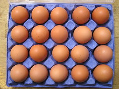 Piggotts Riverside Poultry Farm 20 Large Hen Eggs 2 x 3.39 13092016 29-08-2016 - Box 1 (Lord Inquisitor) Tags: piggotts hen eggs large heneggs eggcarton 13092016