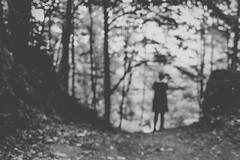 Un bosco, un sogno.. (mariateresa toledo) Tags: bosco sfocato woodland woods blurred outoffocus donna woman sogno dream alberi trees sonynex7 sonnarte1824 mariateresatoledo dsc01455modifica1