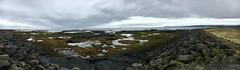 Coastline / Iceland (verplanck) Tags: nature solitary europe sea estuaries iceland ocean