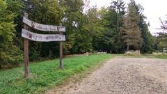 Opelwiese im Hunsrück