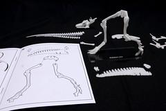 IMG_6864 (Barman76) Tags: bonelab trex tyrannosaur skeleton plastic laser cut
